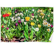 Spring colours - painted Poster