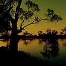murray river by fazza
