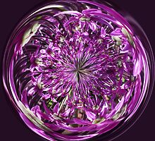 Purple Explosion by Robert Gipson
