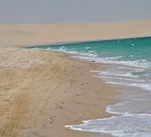The Arabian Sea by corsefoto