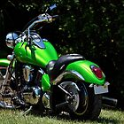 The Mean Green Machine by mimsjodi
