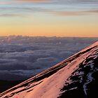 The Big Island of Hawaii - Mauna Kea at Sunrise by Edith Reynolds