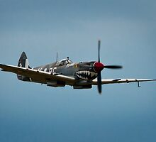 Mk VIII Spitfire Fly Over by Chris  Randall