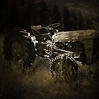 Old Massey Ferguson by Josie Jackson