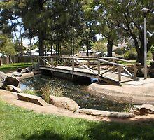 Random Park Hidden In Adelaide, S.A by TiffanyLee