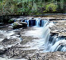 Aysgarth Falls. by Irene  Burdell