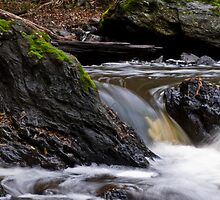 a stones flow by paul erwin