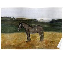 71 - CLYDESDALE HORSE - DAVE EDWARDS - WATERCOLOUR - 1997 Poster