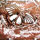 Butterfly Print 2 by Holly Daniels