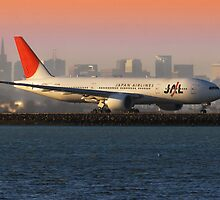 Japan Airlines at San Francisco by MattGranz