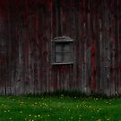 Red Barn Window by Sandra Guzman