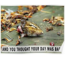 And you thought YOUR day was bad?  Poster