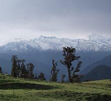 Himalayan mountains from Panwali Kantha by Sanjay Jangid