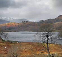 Rydal Water in Winter, Lake District by Steve  Liptrot