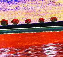 All in a Row by Lenore Senior