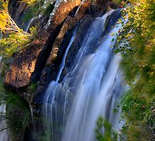 minyon falls by michelle mcclintock