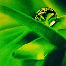 Water Droplet on a Leaf by Graham Beatty