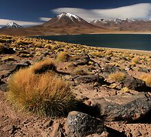 Lagoon and Volcanoes Atacama Desert - Chile by David Pillinger