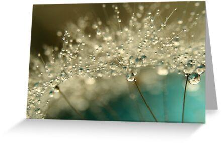 Smoky Blue by Sharon Johnstone