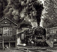 Coathland by Delfino
