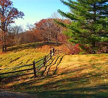 Crooked Fence by Sheryl Gerhard