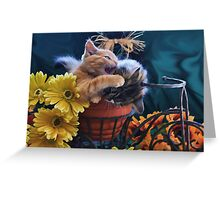 Di Milo ~ Psychocat ~ Angry Kitten Biting Kitty Cat Greeting Card