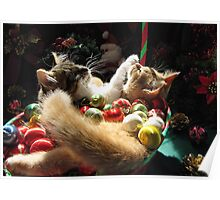 Venus & Di Milo ~ Serenity ~ Christmas Kittens Poster