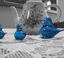 Three Blue Birds, All In a Row by kersey