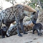 Hyena Family by Michael  Moss