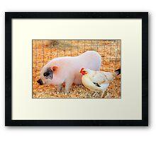 Bacon and Eggs Framed Print