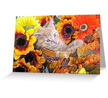 Di Milo ~ Cute Kitty Cat Kitten in Decorative Fall Flowers Greeting Card