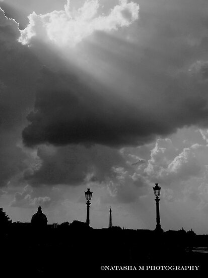 Rays of Parisien Sunshine by Natasha M