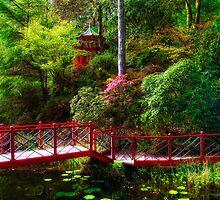 Portmeirion - Japanese garden, Wales by Simon Duckworth