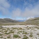 Mt Kosciusko by Jane65