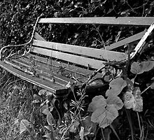 Old bench by Esther  Moliné