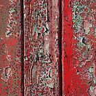 red door detail by lukasdf
