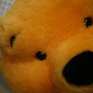 Pooh Bear up close with a glint in the eye by DJ-Stotty