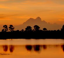 Sunset Silhouette by Susan  Kimball