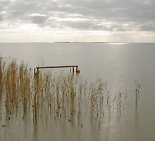 Lake Albert by Dennis Wetherley