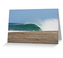 PELICANS SURFING Greeting Card