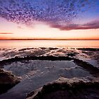 Mauve Magic - Wellington Point Qld by Beth  Wode