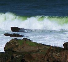 Surfin' USA ~ Gloucester, Massachusetts by artwhiz47