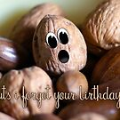 Belated Birthday Card - Nuts I forgot your birthday by Moonlake