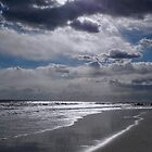 Silver Linings Skim the Sea by Lynda Lehmann