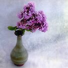 Lilac Time by LouiseK