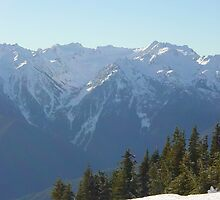 Hillside at Hurricane Ridge 2 by mrscaer