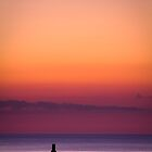 Lone Soldier by terrylangham