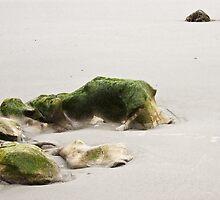 Low Tide by Mikhail Lenitsyn