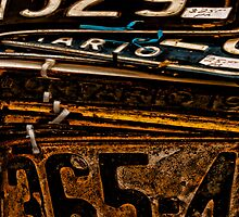 Vintage Licence Plates by sundawg7