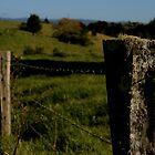 Maleny Fence by bluehorizons